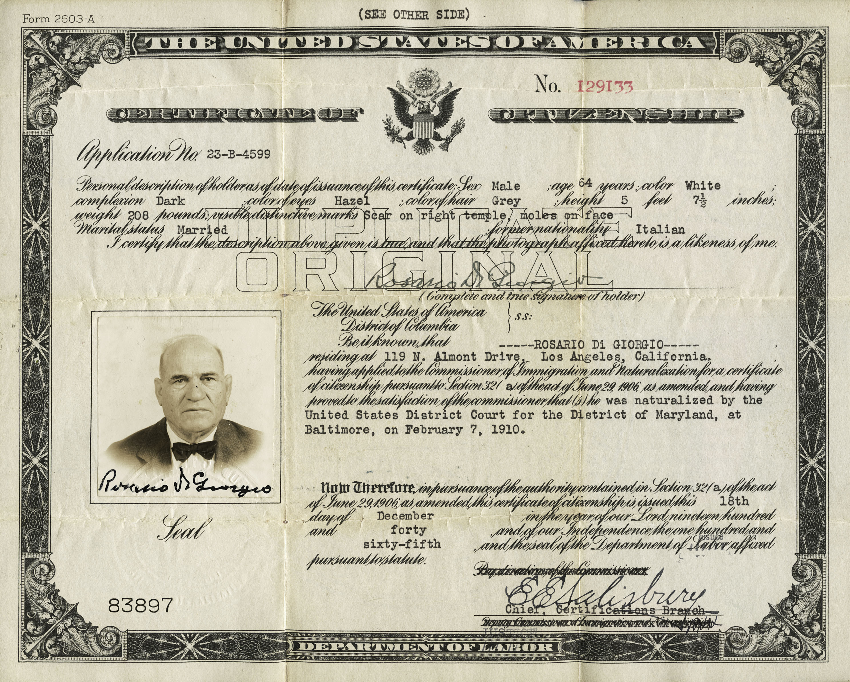 Rosario di giorgios certificate of us citizenship etg design family member links xflitez Images