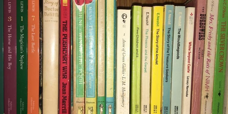 One of Elliot's shelves of children's books